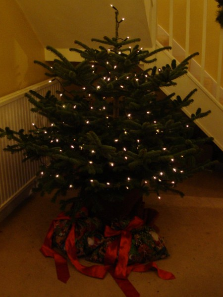 How (not) to decorate a Christmas tree - Rated People Blog
