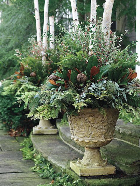 Winter garden landscaping ideas Rated People Blog – Plants for Winter Garden
