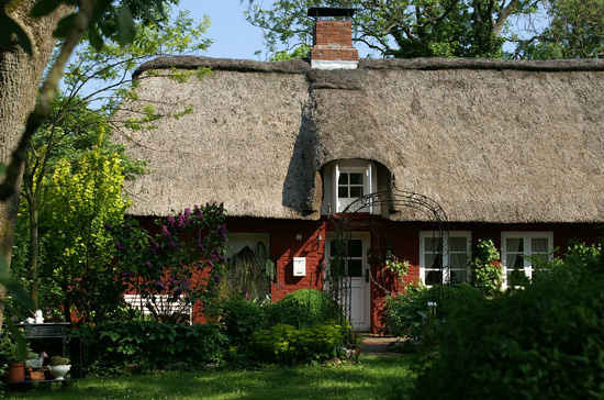 coloured house with thatched roof