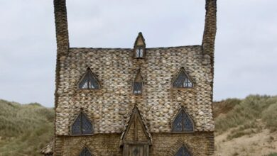 Photo of A Formula 1 palace and Harry Potter's oyster shell cottage