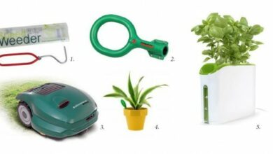 Photo of The gadget zone: gardening tools