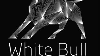 Photo of White Bull's Bully Award Winner: RatedPeople.com