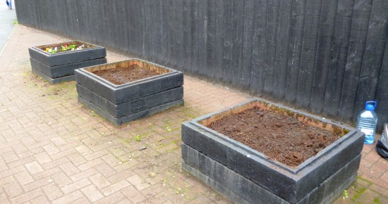 raised beds for garden