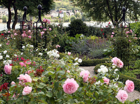 Opt For Easy To Maintain Gardens Britons Told Rated