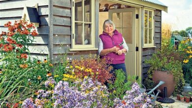 Photo of Older people value gardens in summer