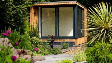 Photo of Shed solutions: from office space to storage