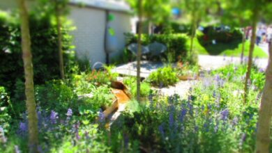 Photo of Garden Design Ideas & Tips from Phil Spencer