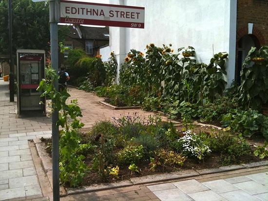 The Edible Bus Stop