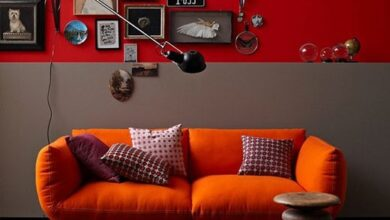 Photo of Autumn to winter colour trends for the home