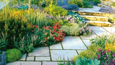 Photo of Garden Design Ideas for Beginners