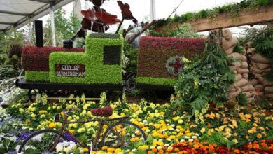 Photo of Garden Ideas: Chelsea Flower Show 2014