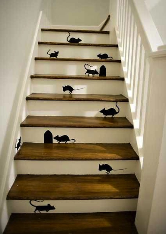 mouse proof house
