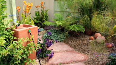 Photo of The ins and outs of rainwater harvesting systems