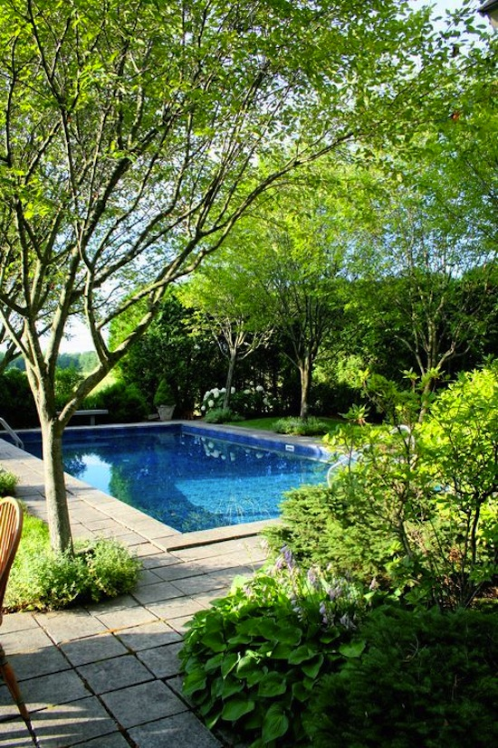 How To Maintain Your Swimming Pool Throughout Winter Rated People Blog