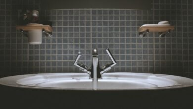 Photo of World Water Day: practicing water efficiency in your home and garden