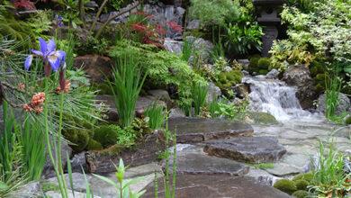 Photo of Chelsea Flower Show: a garden designer's perspective