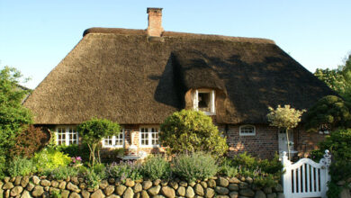 Photo of Thatched Roof Maintenance and Care