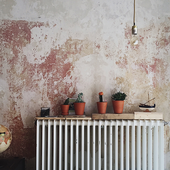plant pots sitting on the radiator