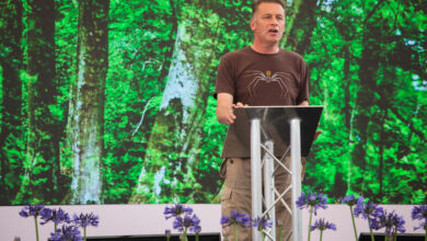Photo of Building a sustainable and biodiverse garden: top tips from Chris Packham