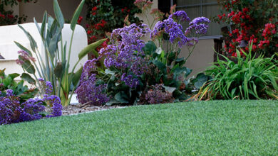 Photo of 5 things to consider before you lay artificial grass