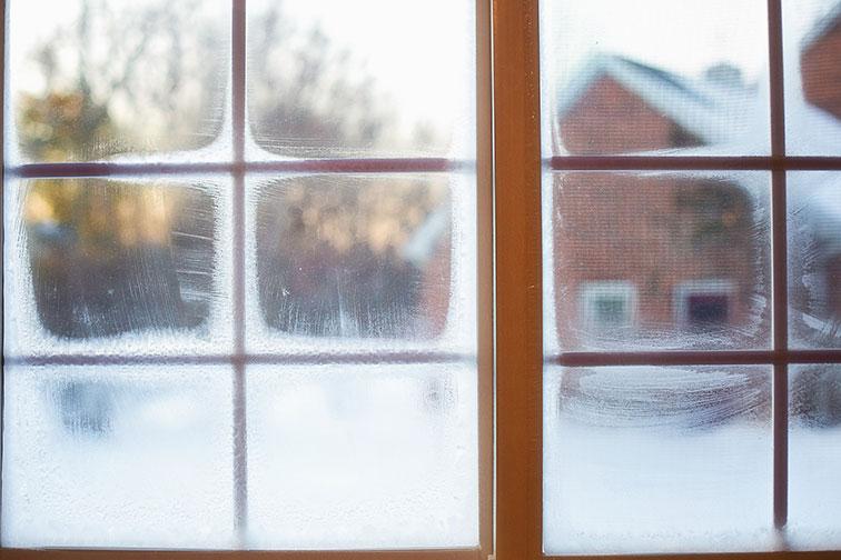 frosty windows