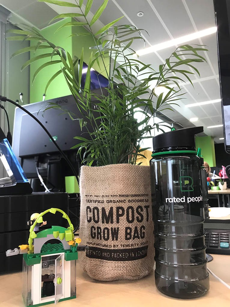 rated people water bottle and office plant