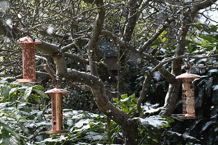 copper bird feeders