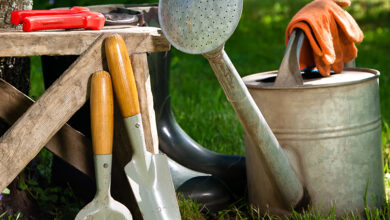 Watering can and trowels