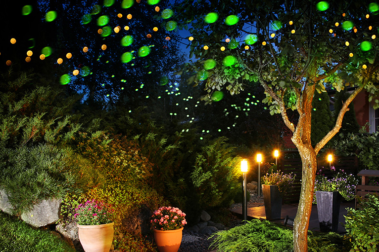 Garden full of colourful lights