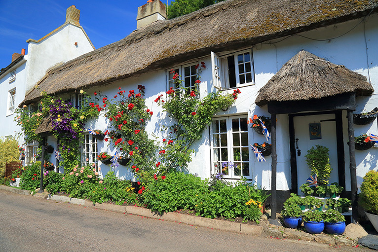 Thatched cottage with plants outside