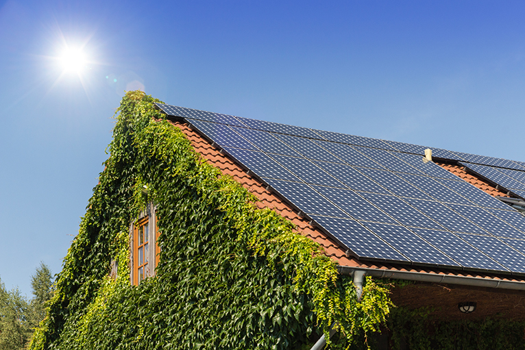 House with solar panels and living wall