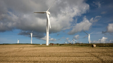 Photo of Green energy: Boris Johnson's £160m manifesto pledge to power every UK home with wind power