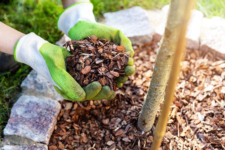 Hands wearing garden gloves and holding mulch