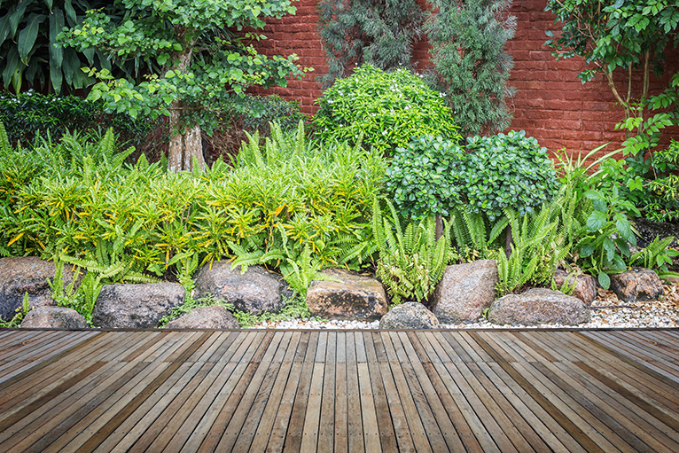 Plants next to patio
