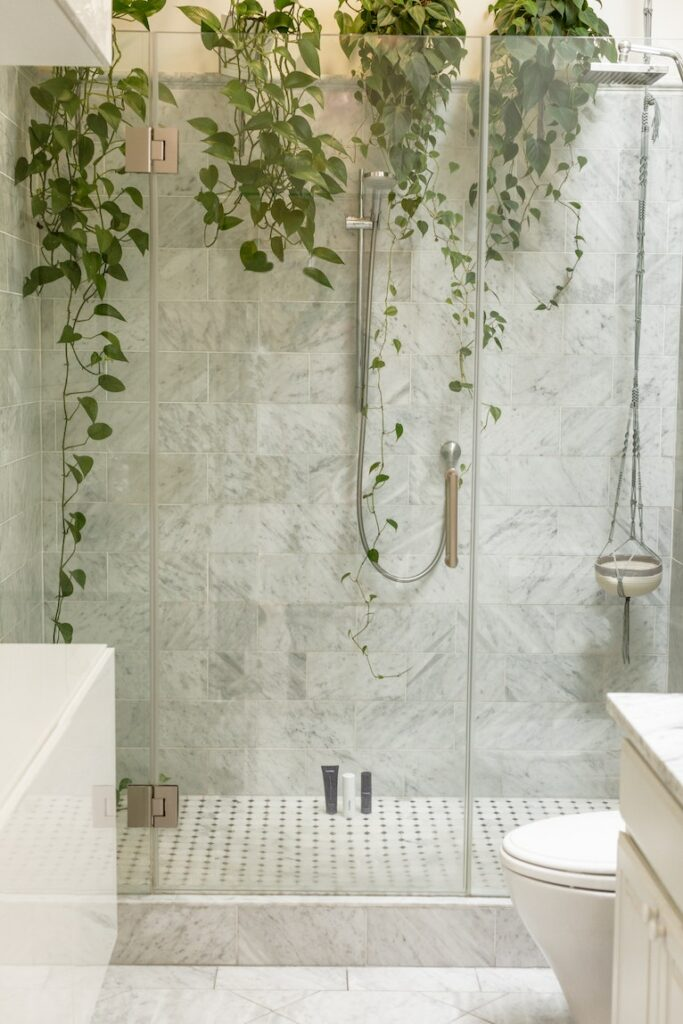 Budget bathroom improvements: Shower cubicle with hanging plants