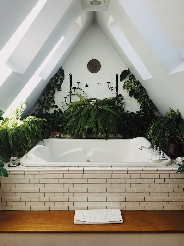 Bathtub surrounded by plants