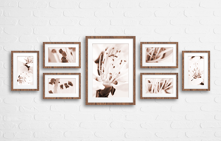 Collage of frames with brown floral wallpaper