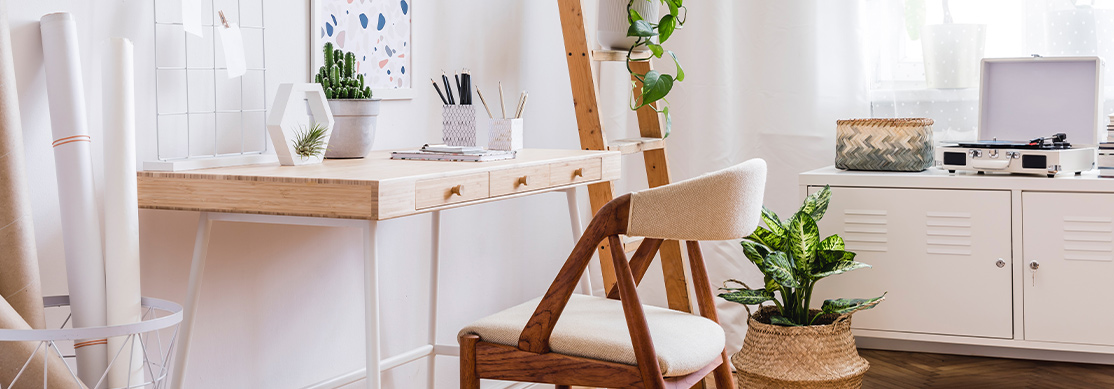 Bright home office with stylish desk and houseplants.