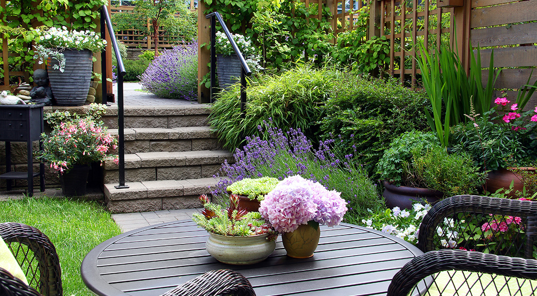 Beautiful garden with flowers and garden furniture.