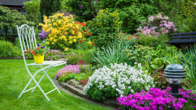 Photo of 6 things to do before starting a garden landscaping or design project
