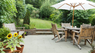 Photo of How to improve your garden in less than an hour