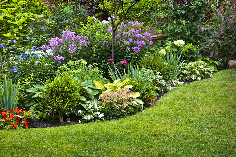 Landscaped garden with blooming flowerbed
