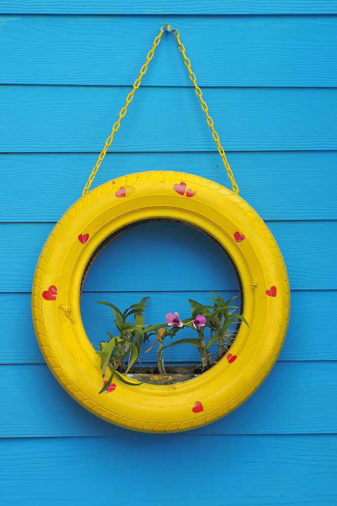 Upcycle: Old tyre upcycled into plant holder