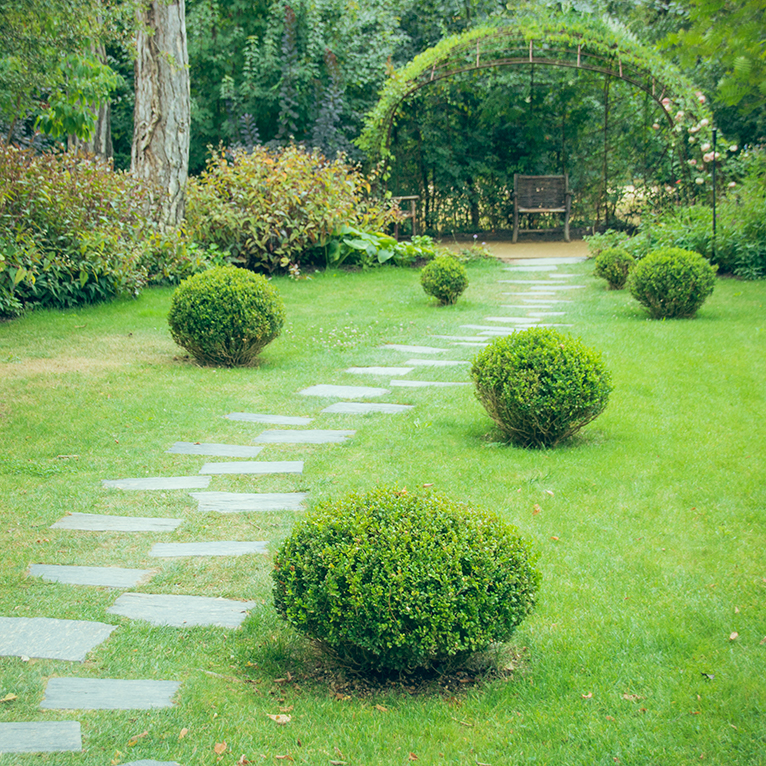 Garden path leading to bench