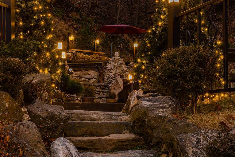 Lights in garden plants