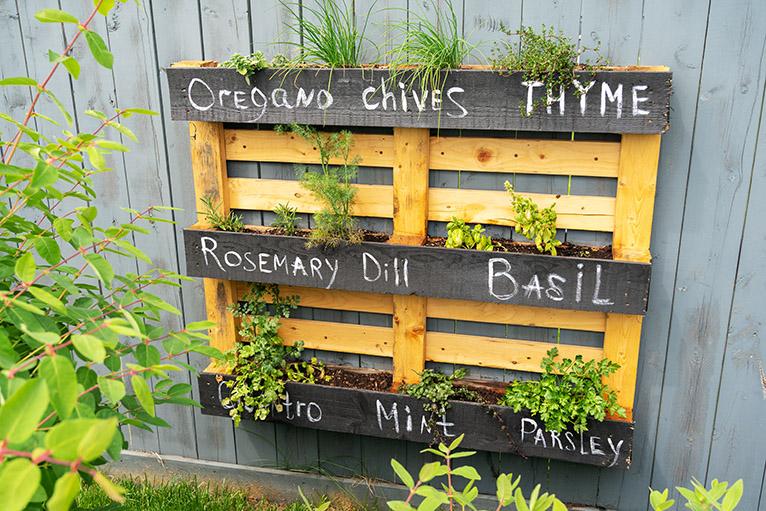 DIY wood herb planter hanging on garden fence