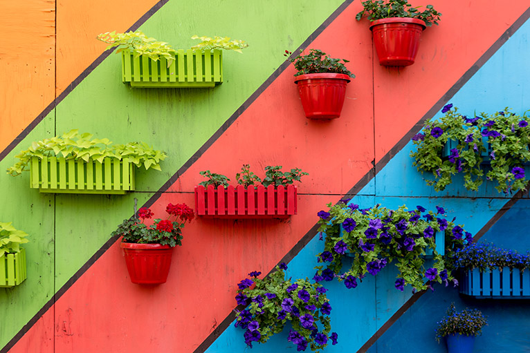 Multicoloured garden wall with colourful plastic plant pots