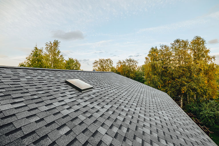 roof covered with shingles flat polymeric roof-tiles