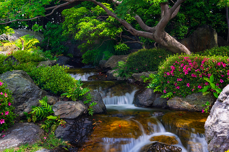 Peaceful image of garden with lush greenery and a gentle waterfall running through the middle.