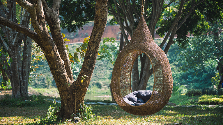 Thatched, wooden egg chair, hanging from a tree sat within a sunlit forest.